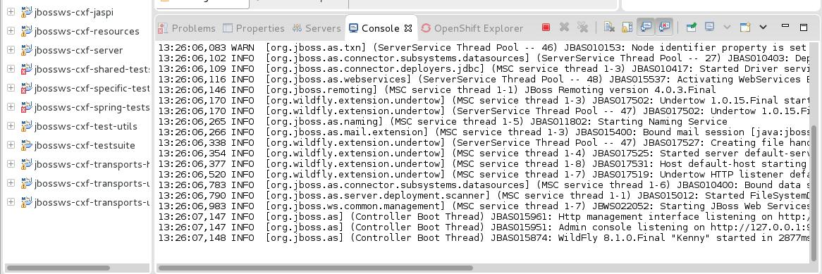 S9-valid-server-startup.png