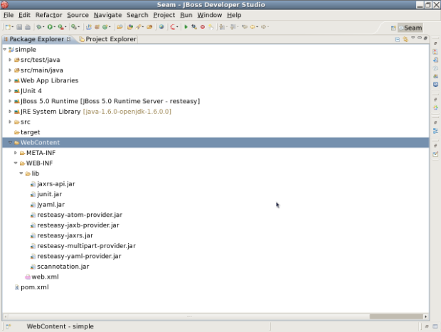 Screenshot-Seam - JBoss Developer Studio -1.png