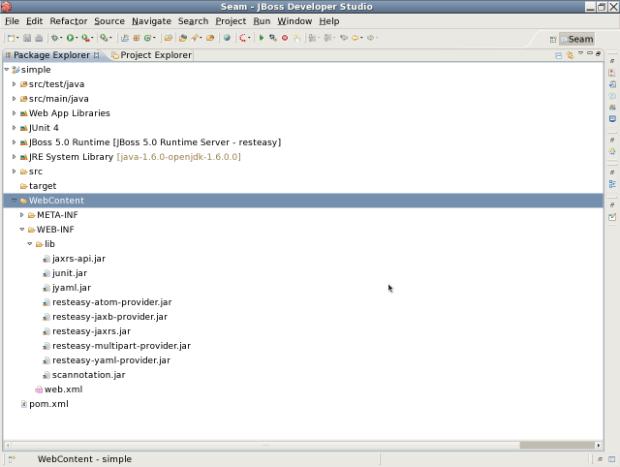 Screenshot-Seam - JBoss Developer Studio -1.png