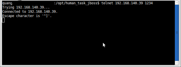 verify_human_task_jboss.png