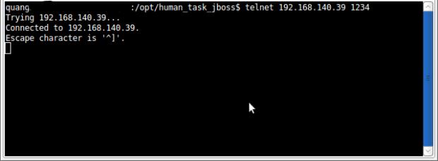 verify_human_task_jboss.png