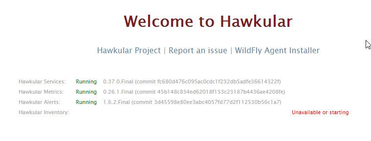 hawkular_1.jpg