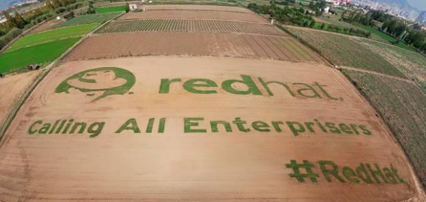 RedHat_Giant_Field_Logo.jpeg