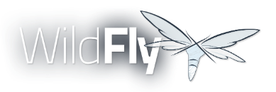 splash_wildflylogo.png